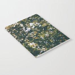 Memory of Summer Notebook