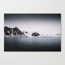 Arctic Wilderness 03 - Glacier, Gull and Mountains Canvas Print