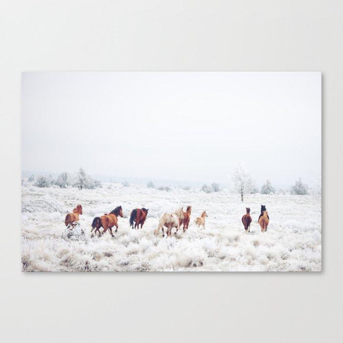Winter Horses Leinwanddruck