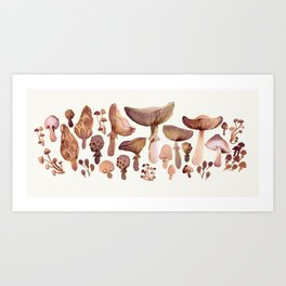 Watercolor Mushrooms Art Print