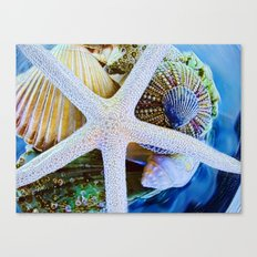 All the Colors of the Sea Canvas Print