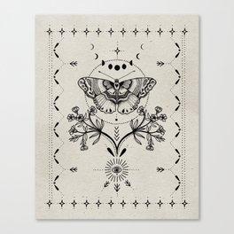 Magical Moth Canvas Print