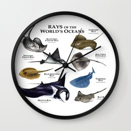 Rays of the World's Oceans Wall Clock