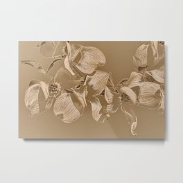 Dogwood Tree Flowers (sepia-light) Metal Print