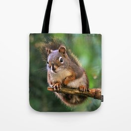 Who, Me? A Saucy Red Squirrel Tote Bag