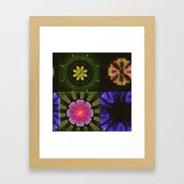 Brinish Symmetry Flowers  ID:16165-053020-45980 Framed Art Print