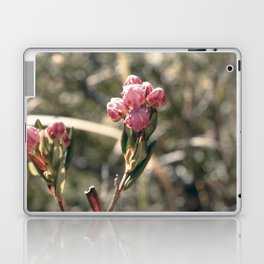 Blossom Burst Laptop & iPad Skin
