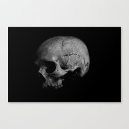 Left for Dead Canvas Print