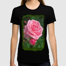Pink Roses in Anzures 2 Blank P1F0 T-shirt