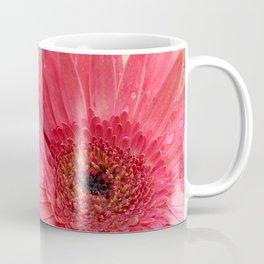 Pink Gerber Daisy with Rain Drops Coffee Mug