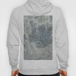 Park City Resort Trail Map Hoody