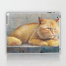 Ginger Laptop & iPad Skin