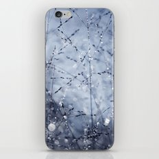 illumination iPhone & iPod Skin
