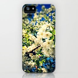 It's Spring iPhone Case
