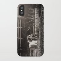 horses iPhone & iPod Cases featuring Horses by Kimberley Britt