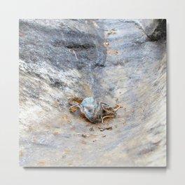 Watercolor Death 07, Ventana Canyon, Arizona, Not so Incredible Journey Metal Print