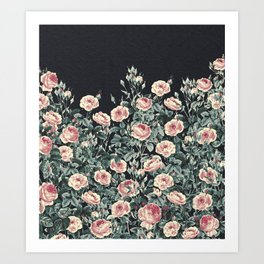 Vintage Garden (Night Roses) Art Print
