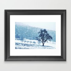 Old pear tree (cool edition) Framed Art Print