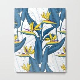 Bird of paradise flowers on white Metal Print