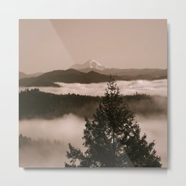 Moments in the fog... Metal Print