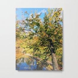 Bending over the lake Metal Print