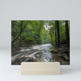 Appalachian Adventure - Ricketts Glen State Park Mini Art Print