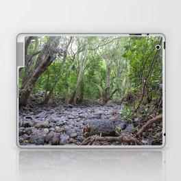river lava rock Laptop & iPad Skin