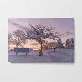 Winter Sunset #2 Metal Print