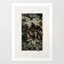 Growth (Autumn) Art Print