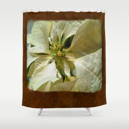 Pale Yellow Poinsettia 1 Blank P3F0 Shower Curtain