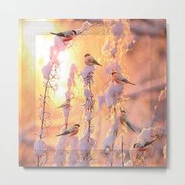Bullfinch Birds In Sunny Winter Morning #decor #society6 Metal Print