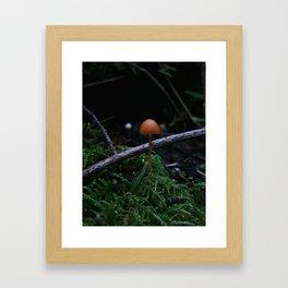 Grow and Glow Framed Art Print