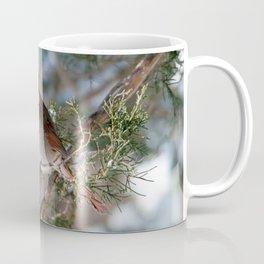 First Winter (Female Cardinal) Coffee Mug