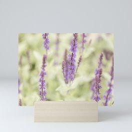 Salvia Flowers 1 Mini Art Print