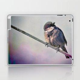 A New York City Sparrow Laptop & iPad Skin