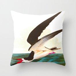 Black Skimmer or Shearwater Bird Throw Pillow