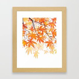 orange maple leaves watercolor Framed Art Print