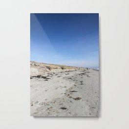 Walk Along The Beach Metal Print