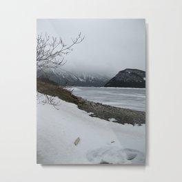 Cold Beauty 3 Metal Print