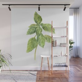 The Basil Plant Wall Mural
