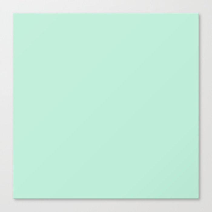 Mint Green Canvas Print