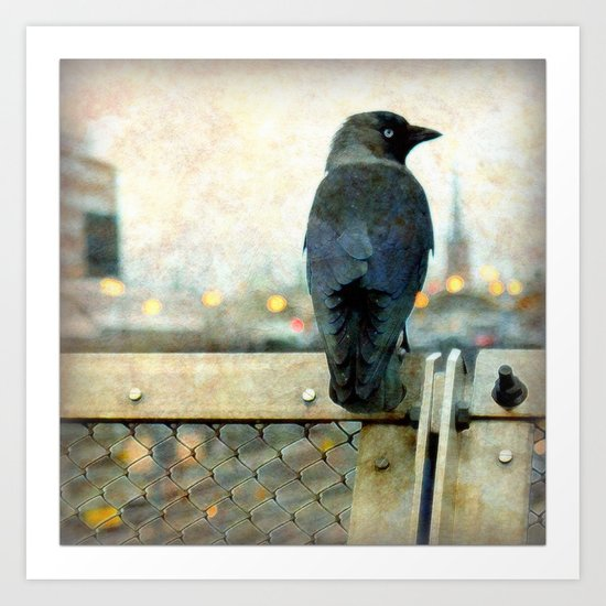 City bird Art Print