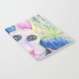 kitty like light Notebook