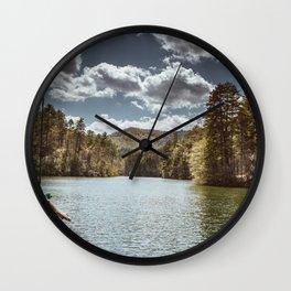 Carolina Rope Swing Wall Clock