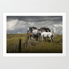 Western Horses by the Pasture Fence under a Cloudy Sky in Montana Art Print