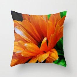 The Spirit of Spring Throw Pillow