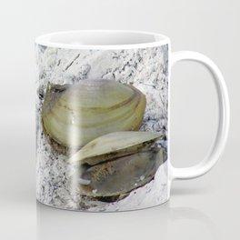 Clamshells Coffee Mug