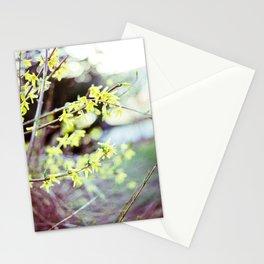 Spring Rebirth Stationery Cards