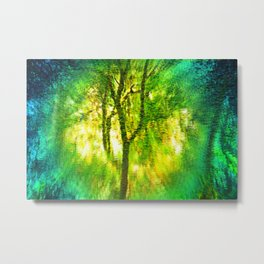Light In The Forest Metal Print