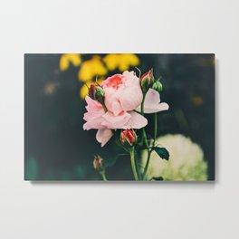 Flower in the wind Metal Print
